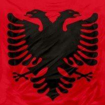 steag albania