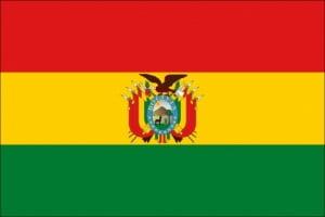 steag bolivia