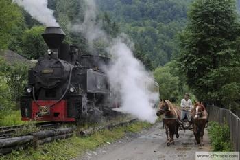 Oferta 2021 Mocanita de pe Valea Vaserului